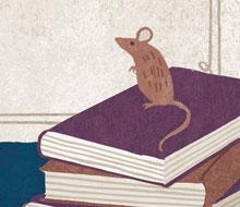Deep Magic, Dragons and Talking Mice
